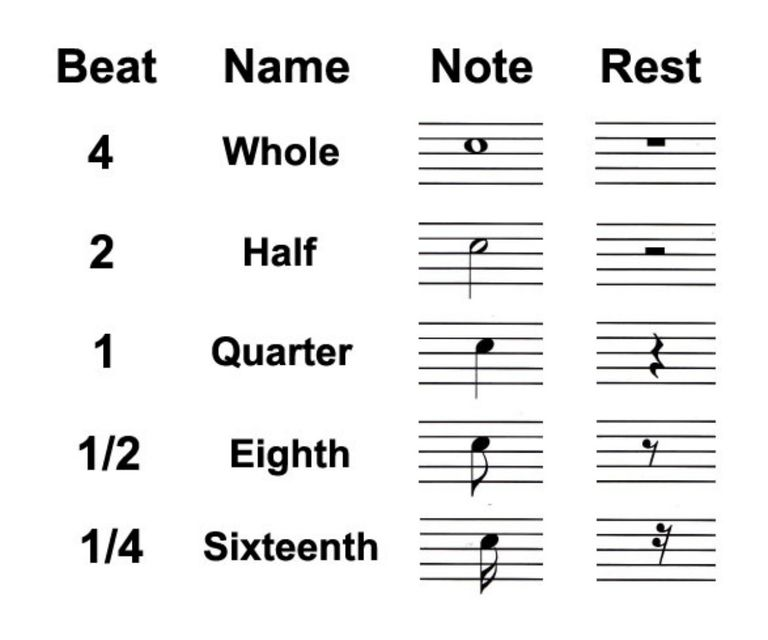Types of Rests in Music: Whole, Half and Quarter