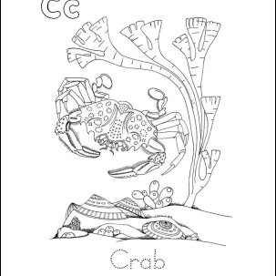 Crab Wordsearch, Vocabulary, Crossword, and More