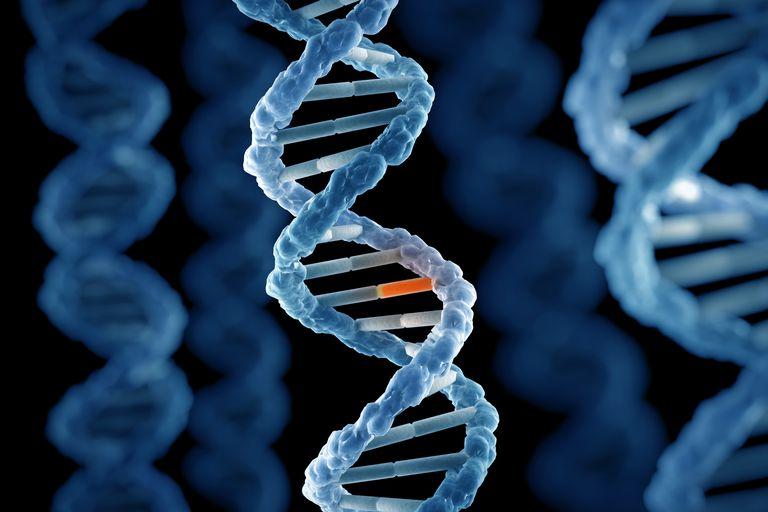 how do dna mutations