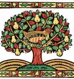 a partridge in a pear tree [ 1500 x 1263 Pixel ]