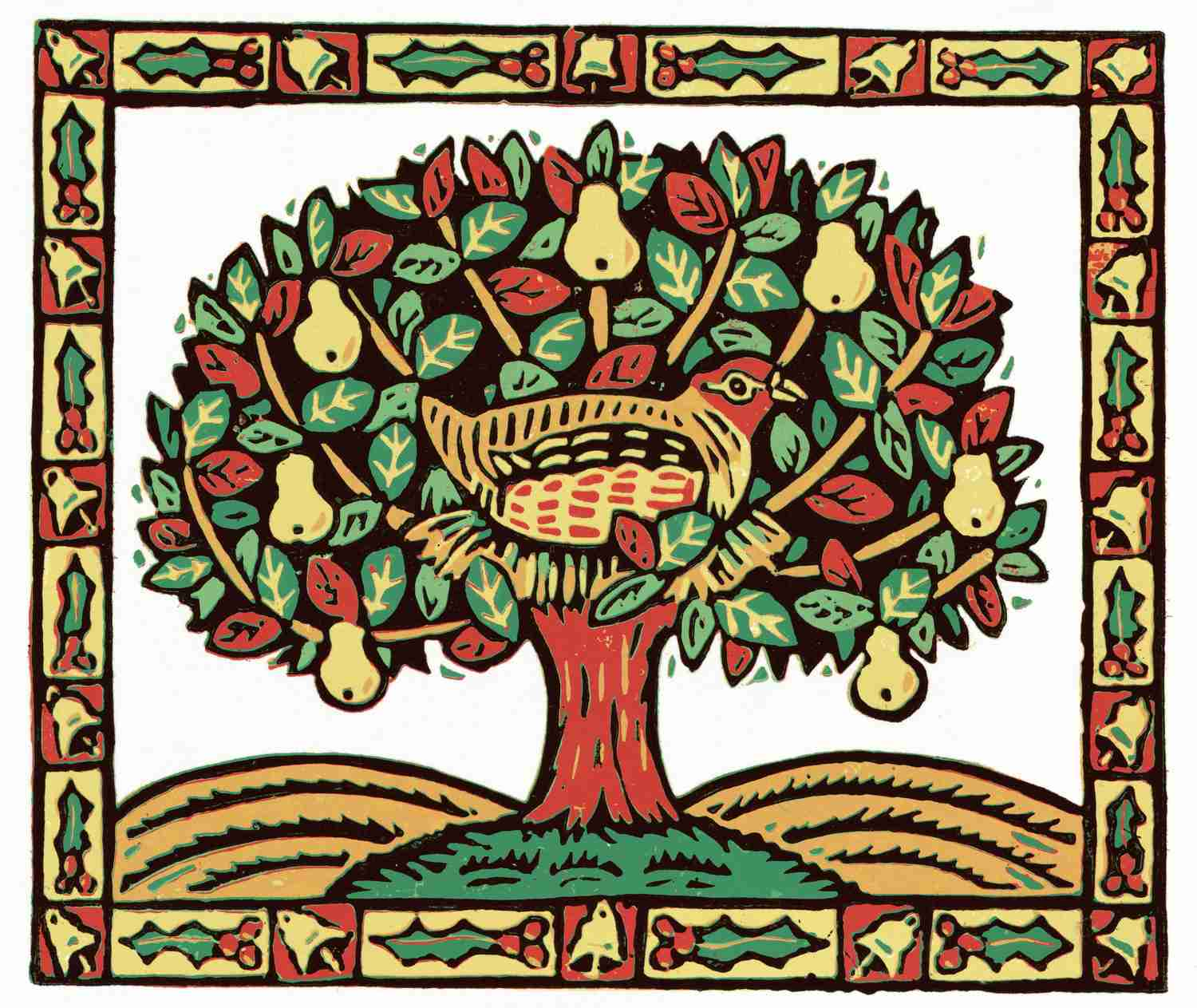 hight resolution of a partridge in a pear tree