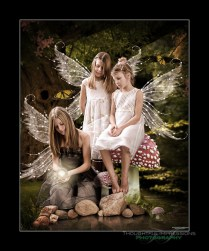 3-Fairy