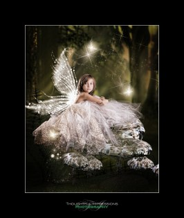 Woodland_Fairy_Mushrooms