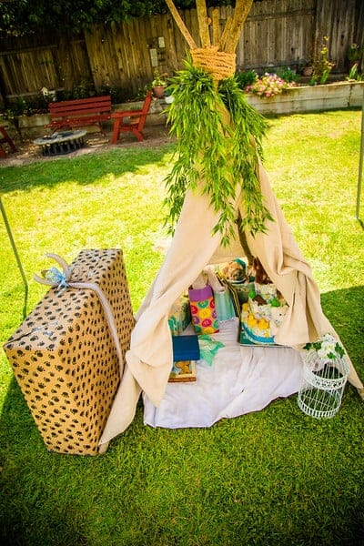Woodsy Outdoor Camping Themed Baby Shower