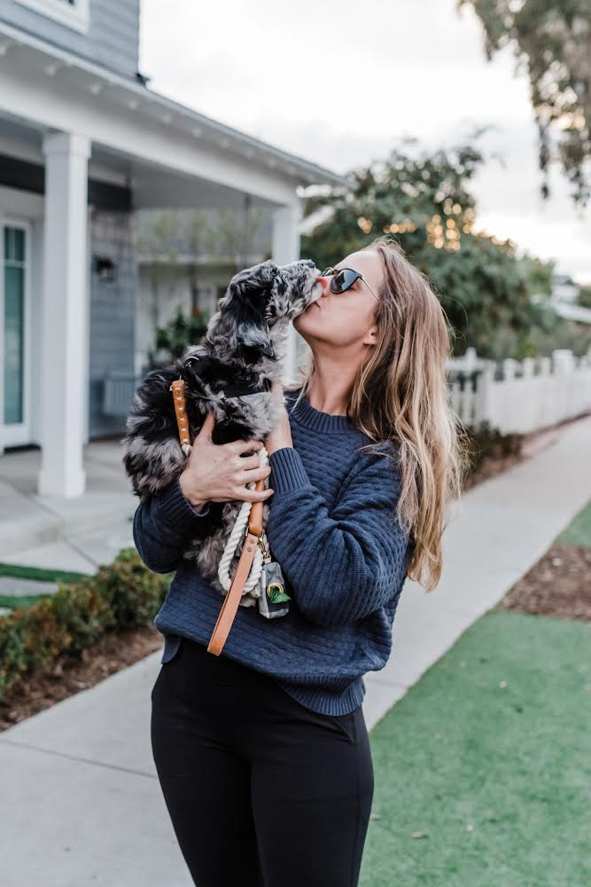 Meet Millie | Bringing home puppy | sheepadoodle puppy