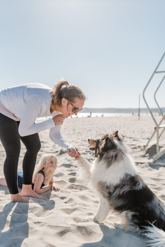 DOG DAYS OF SUMMER WITH FEBREZE PET ODOR FABRIC AND AIR | THOUGHTSBYBRANDI.COM