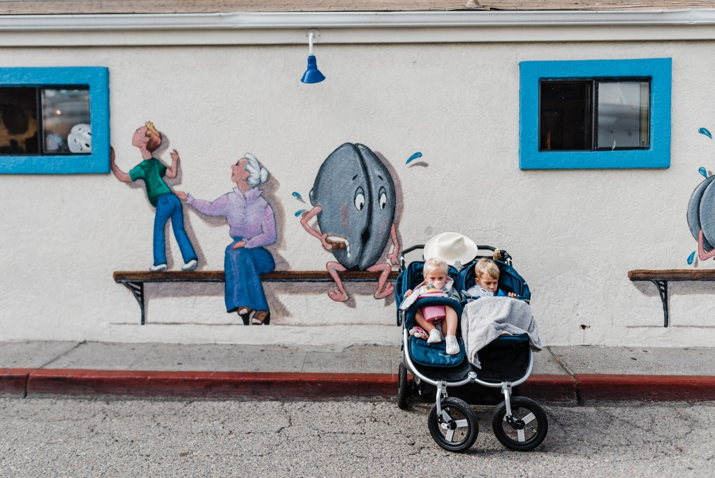 Bumbleride Indie Twin Review   Double Stroller   Thoughtsbybrandi.com