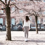Cherry Blossom Trees OOTD Outfit Fashion
