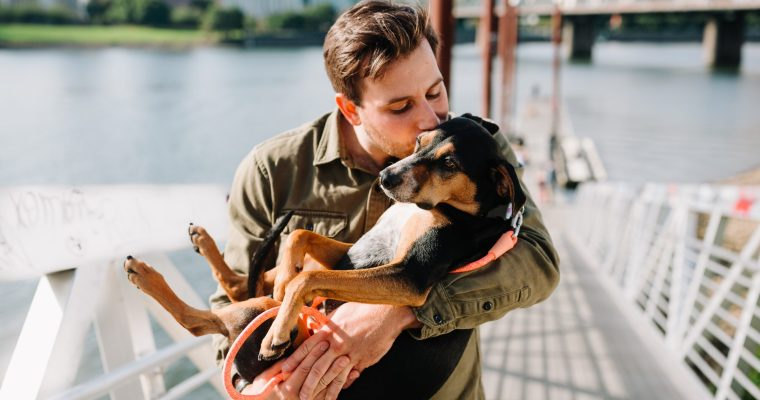 Why dogs are good for your mental health