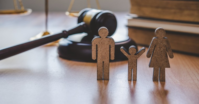 What Type of Cases Are Family Court Cases?