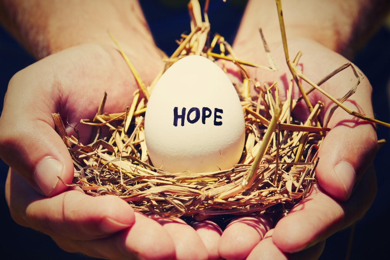 3 Life-Changing Reasons to Become an Egg Donor