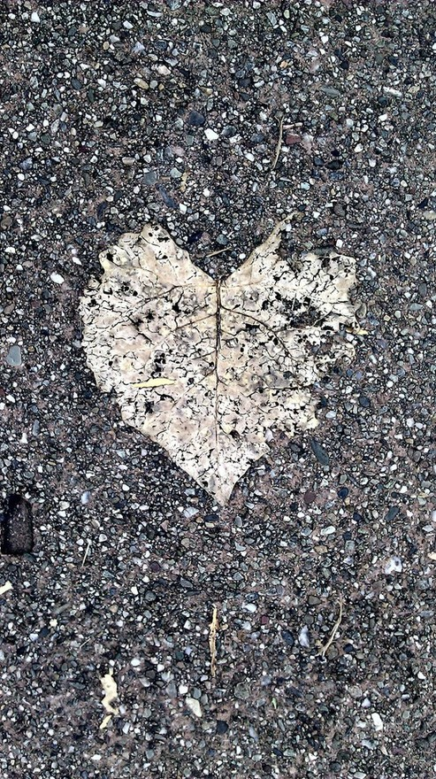 Broken Hearts Never Mend...