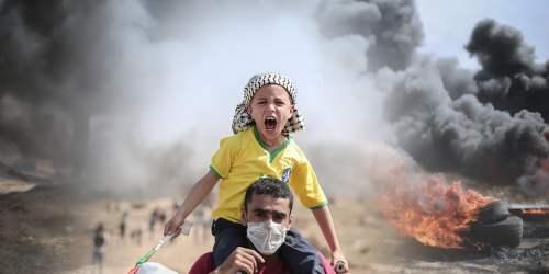 Puisi : Palestine