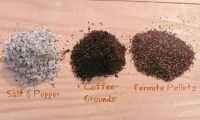 How to Identify Drywood Termite Droppings   Thrasher ...