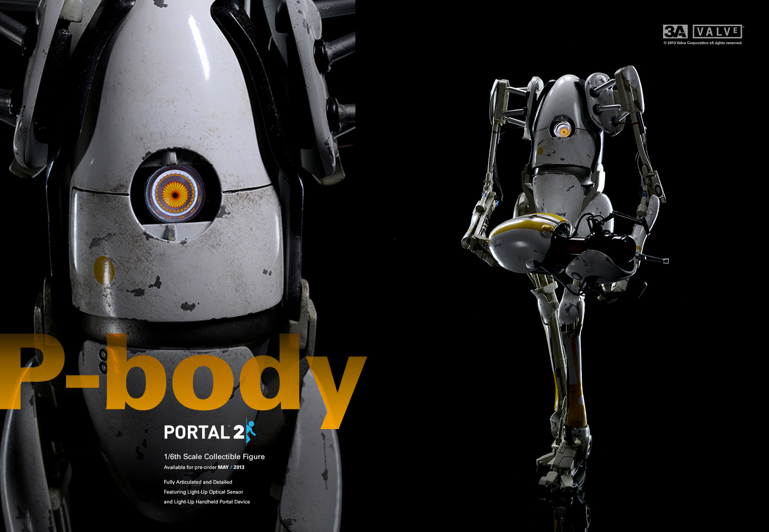 P-Body
