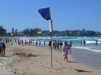 Colourful Lifesaver flags on Manly Beach