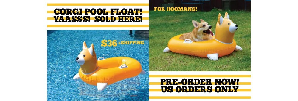 Three Corgi Pool Float