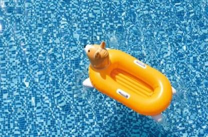 Corgi Inflatable