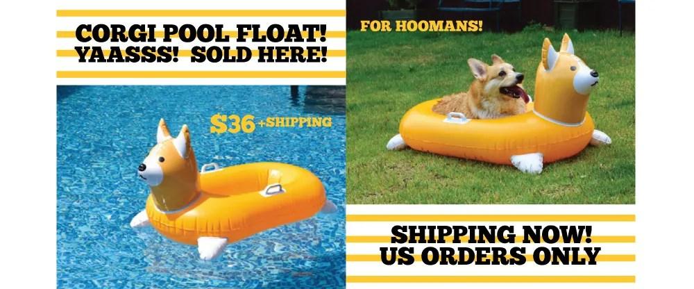Inflatable Corgi Float