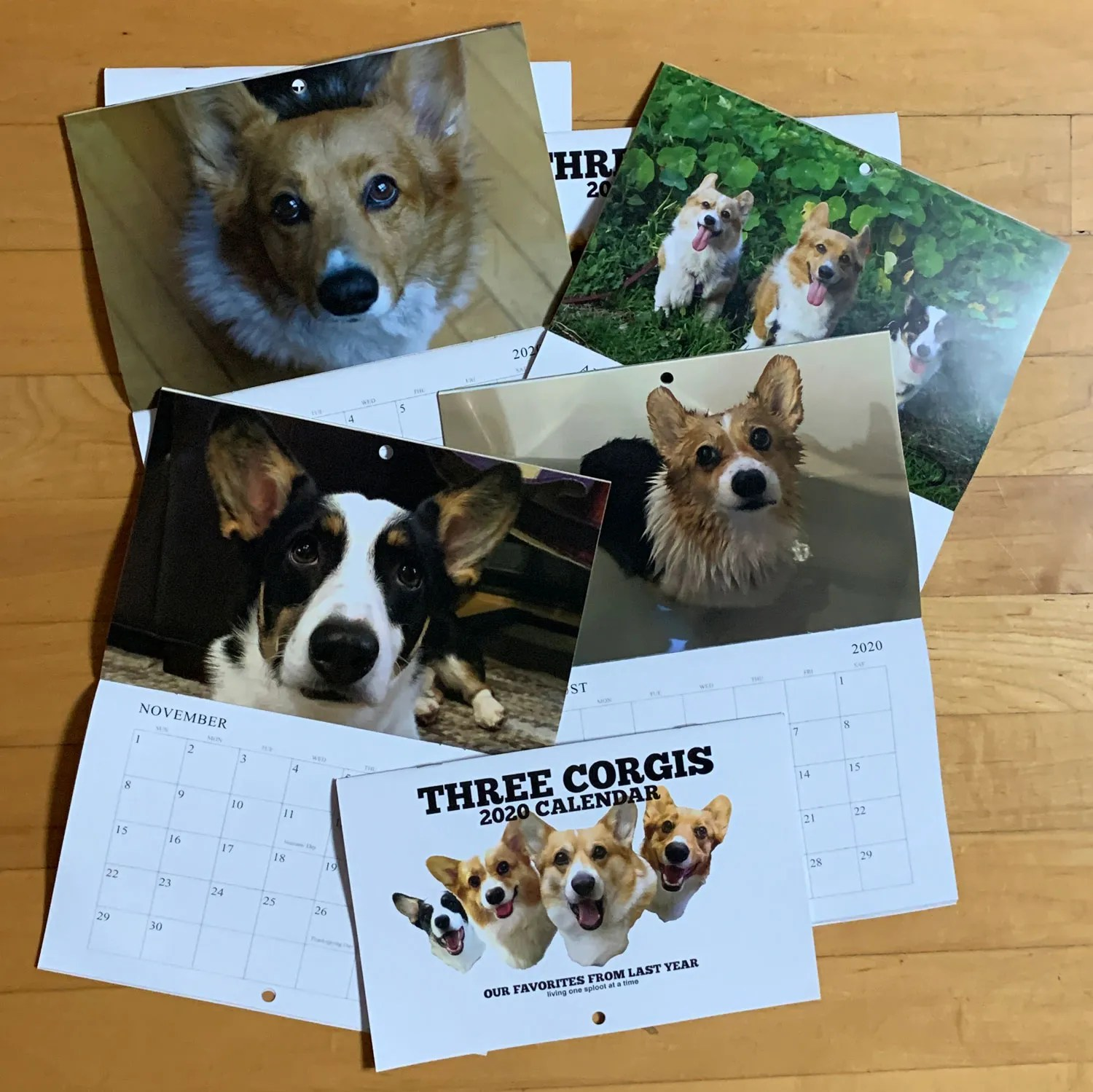2020 Three Corgis Calendar