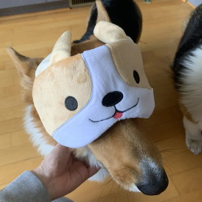 Milo Corgi Eye Mask