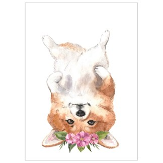 UPSIDE DOWN CORGI