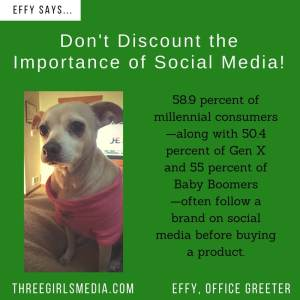 Effy Says…Social Media is Important!