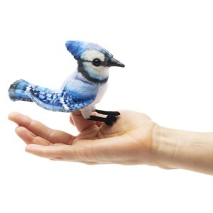 mini blue jay