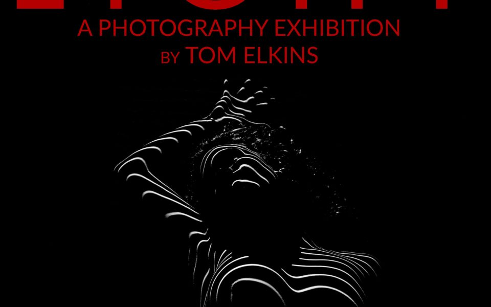 Upcoming exhibition at Ply Gallery