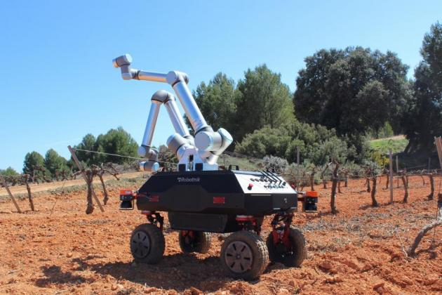 BACCHUS: Ένα ρομπότ στην υπηρεσία των... αμπελουργών