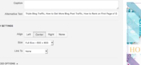 image alt text SEO Google search ranking thrifdeedubai