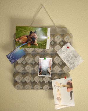 egg carton bulletin board