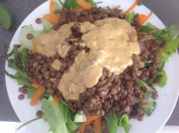 Green lentil, mushroom, raisin and cucumber salad, with a brinjal pickle and yoghurt dressing 46p