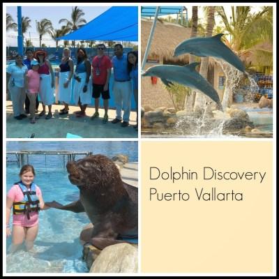 Dolphin Discovery Aquaventuras Waterpark Puerto Vallarta