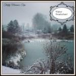 Wordless Wednesday Winter Wonderland