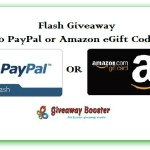Summer Flash Giveaway