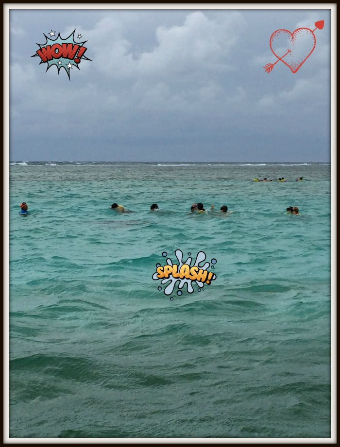 snorkelling-with-nurse-sharks-and stingrays-in-Belize