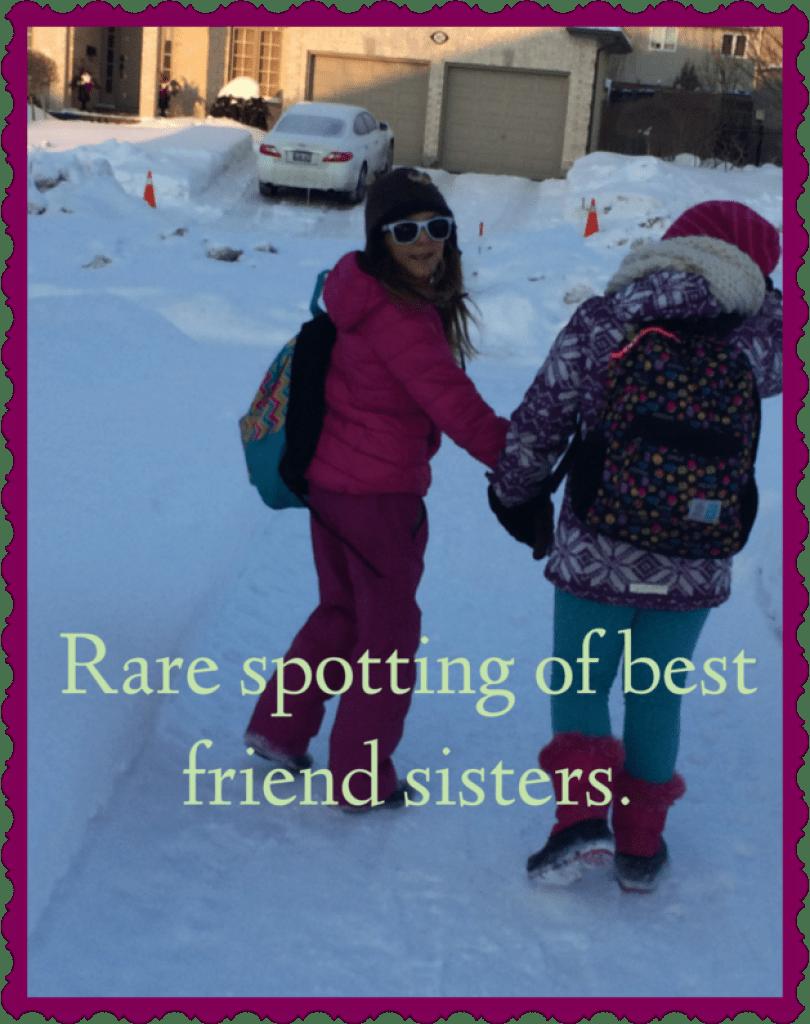 Best Friend Sisters