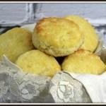 My Favourite Buttermilk Biscuits Recipe