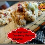 Kid Approved Cranberry Granola Squares
