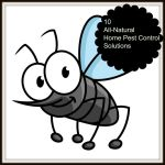 10 All-Natural Home Pest Control Solutions