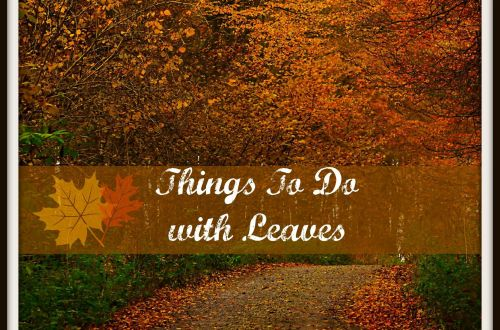 Leaf crafts and activities