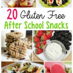 20 Gluten Free After School Snacks