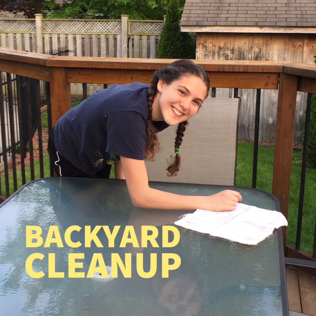 backyard_cleanup