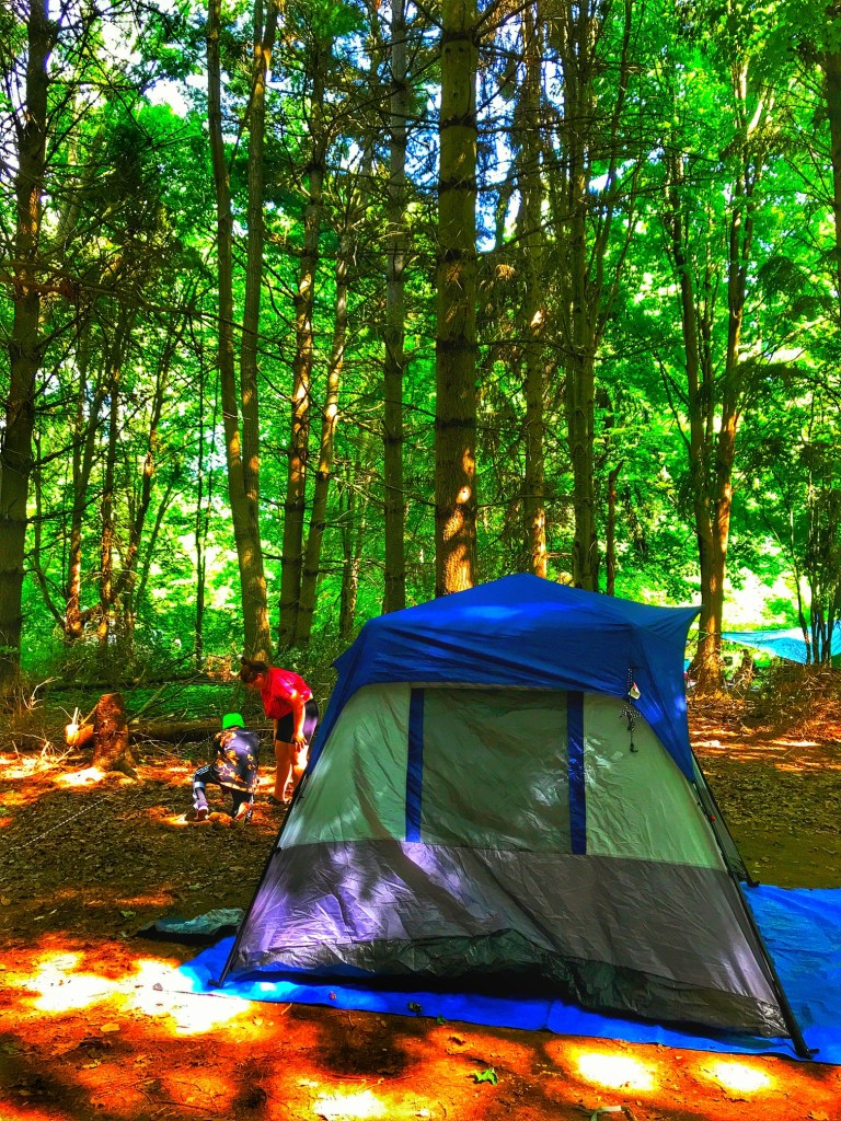 tent_in_provincial_park_two_girls_setting_up_srrounded_by_trees