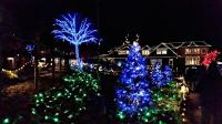Butchart Gardens in Victoria, BC at Christmas!