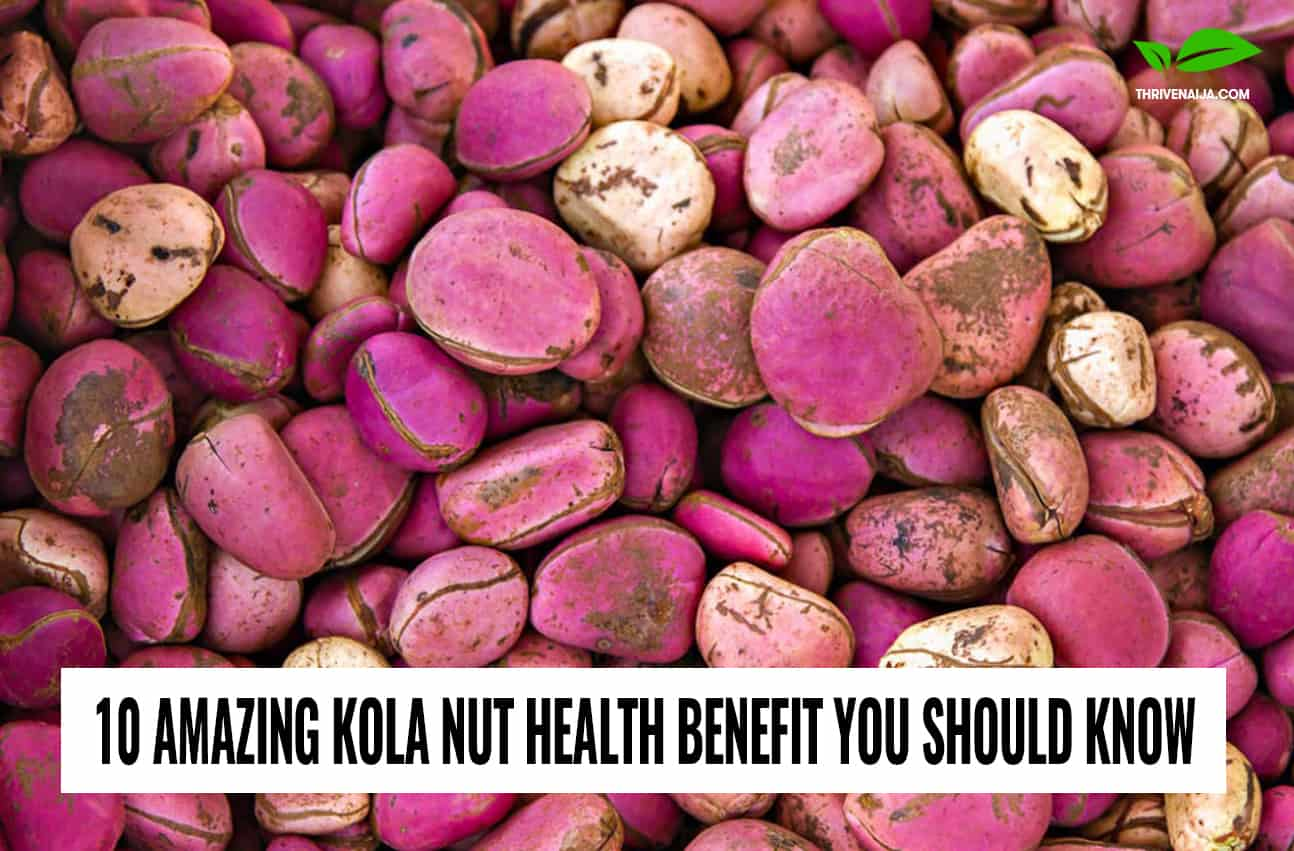 Kola Nut Health Benefits Worth Knowing | Thrive Naija