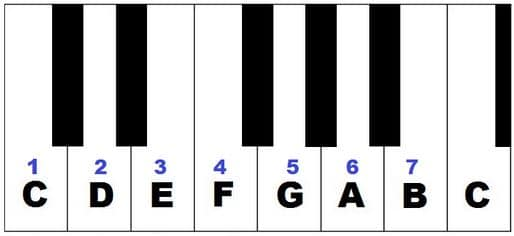 What Piano Scales Should I Learn First? A Beginners Guide