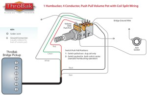 ThroBak Humbucker Coil Split Diagram  ThroBak