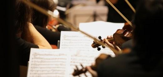throwcase orchestra
